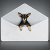 Deliverability Reminders: Subject Line Tips